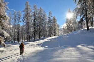 Sonnige Winterwanderung
